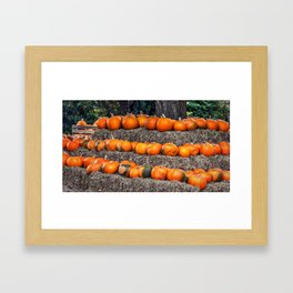 Pumpkin Time. Framed Art Print
