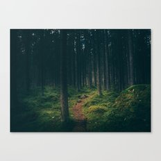 Wander Path Canvas Print