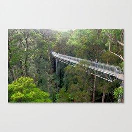 Otway Fly Tree Top Walks Canvas Print