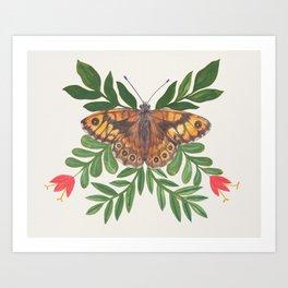 Wall Butterfly Art Print