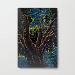 A Tree Grows in Almeria ACPA151010c-14 Metal Print