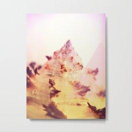 Murex Endivia 2 - The Lonely Mountain Metal Print