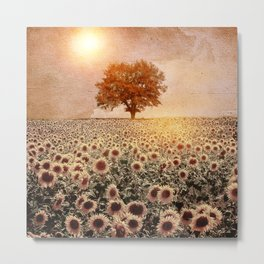 lone tree & sunflowers field (colour option) Metal Print