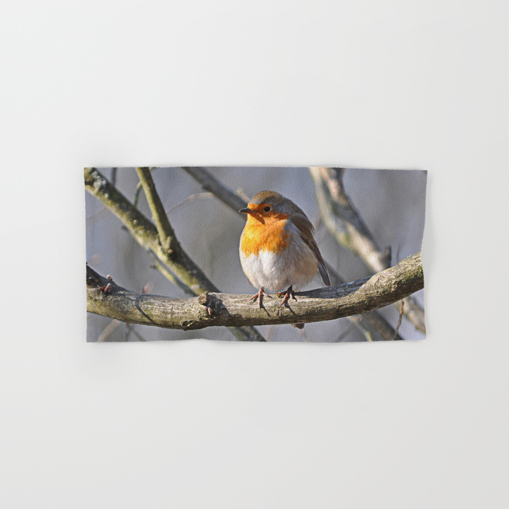 Robin Redbreast Hand Towel by Pirminnohr (BTL915575) photo