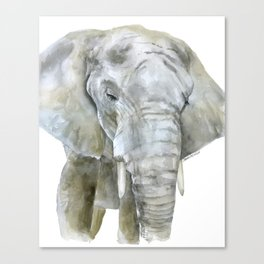 Elephant Watercolor Painting - African Animal Canvas Print