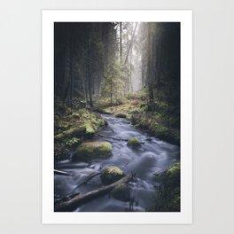 Silent whispers Art Print