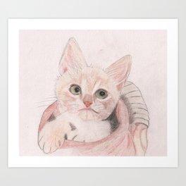 Cute Kitten in a Basket Looking Adorable Art Print
