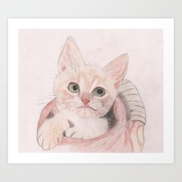 Cute Kitten in a Basket Looking Adorable Art Print