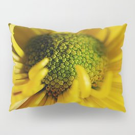 Yellow Flower With Curling Petals Pillow Sham