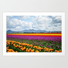 Bright Fields and Mountains Art Print