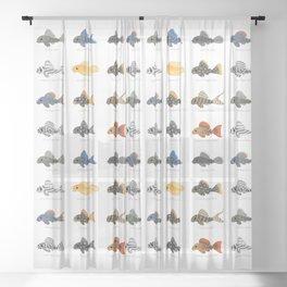 Pleco! - white Sheer Curtain