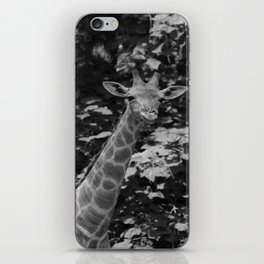 What's on iPhone Skin