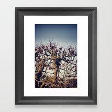 :: lonely tree :: Framed Art Print