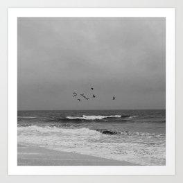 Seagulls on the horizon - Hamptons Style Art Print