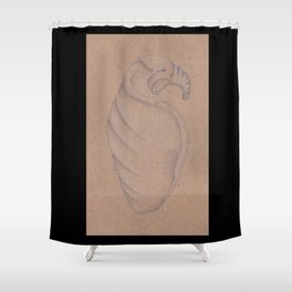 Specimen #8a (shells) Shower Curtain