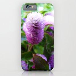 Purple and White Amaranth iPhone Case