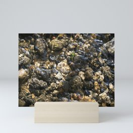 Doulting Pebbles Mini Art Print
