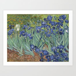 Van Gogh's Irises (High Resolution) Art Print
