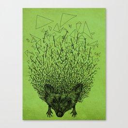Thorny hedgehog Canvas Print