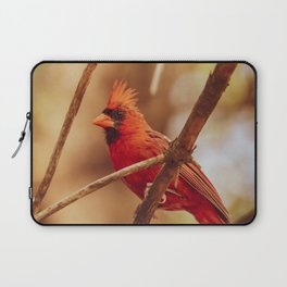 Male Northern Cardinal Laptop Sleeve