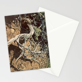 Desert spirit Stationery Cards