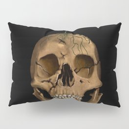 Life from Death Pillow Sham