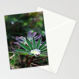 Lupines In Spring 2 Stationery Cards