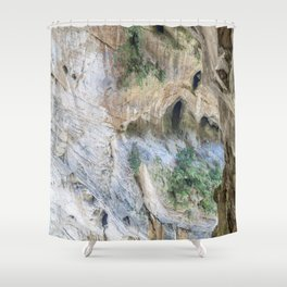 Swallow Grotto Shower Curtain