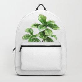 Wicker Planter Backpack