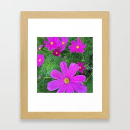 Fun fuchsia flowers Framed Art Print