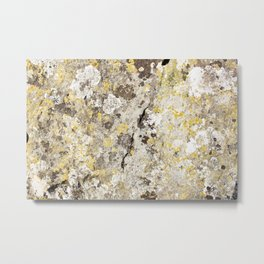 Lichen on The Rollright Stones Metal Print