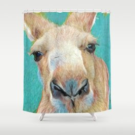 Roo Roo Shower Curtain