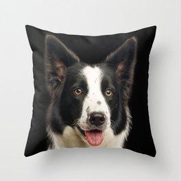 Border Collie Dog Throw Pillow