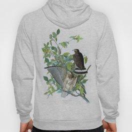 Broad-winged Hawk - John James Audubon Hoody