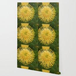 Rising Sun Wallpaper
