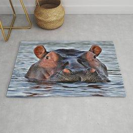 Big hippopotamus Rug
