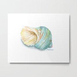Green Turbo Seashell Watercolor Metal Print