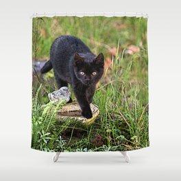 Lovely black cat walking her garden Shower Curtain