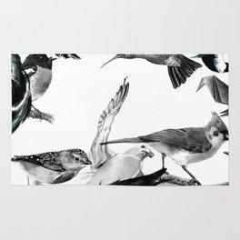 A Volery of Birds Rug
