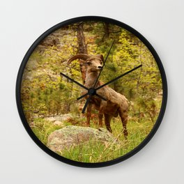 His Teritory Wall Clock
