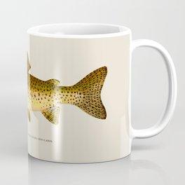 The Steelhead Trout Coffee Mug