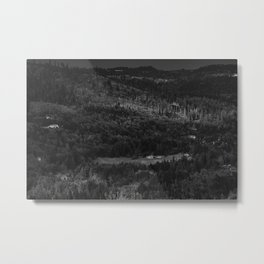Hurricance ridge overlook Metal Print
