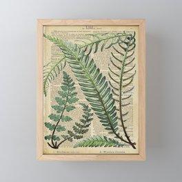 Book Art Page Botanical Leaves Framed Mini Art Print