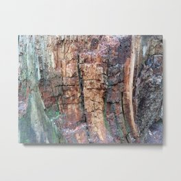 Tree bark in the abstract Metal Print