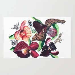 Orchid Cafe Rug