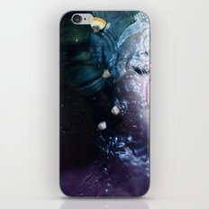 Free Fall iPhone & iPod Skin