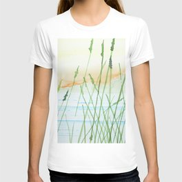 Reeds in a sunset T-shirt