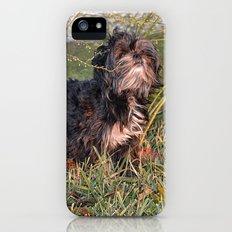 a walk in the field Slim Case iPhone SE