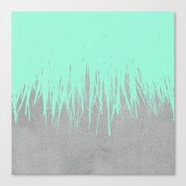 Fringe Concrete Mint Canvas Print