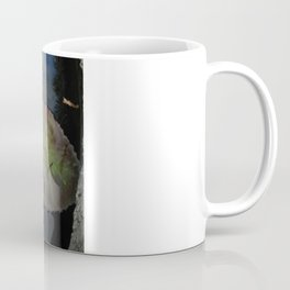 White Lily in Pond Coffee Mug